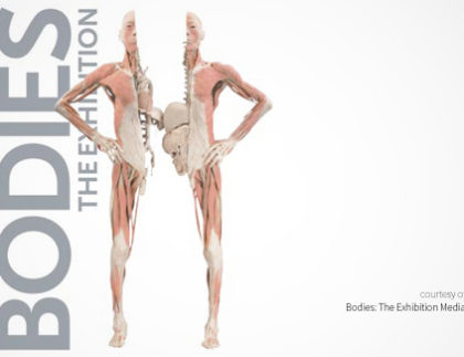 Bodies: The Exhibition